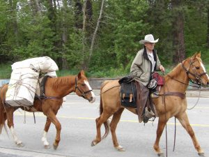 Senior horseman traveling cross country
