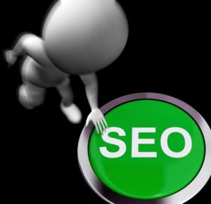 use seo to rank for organic search